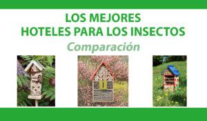comparacion hoteles insectos