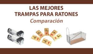 comparacion trampas ratones