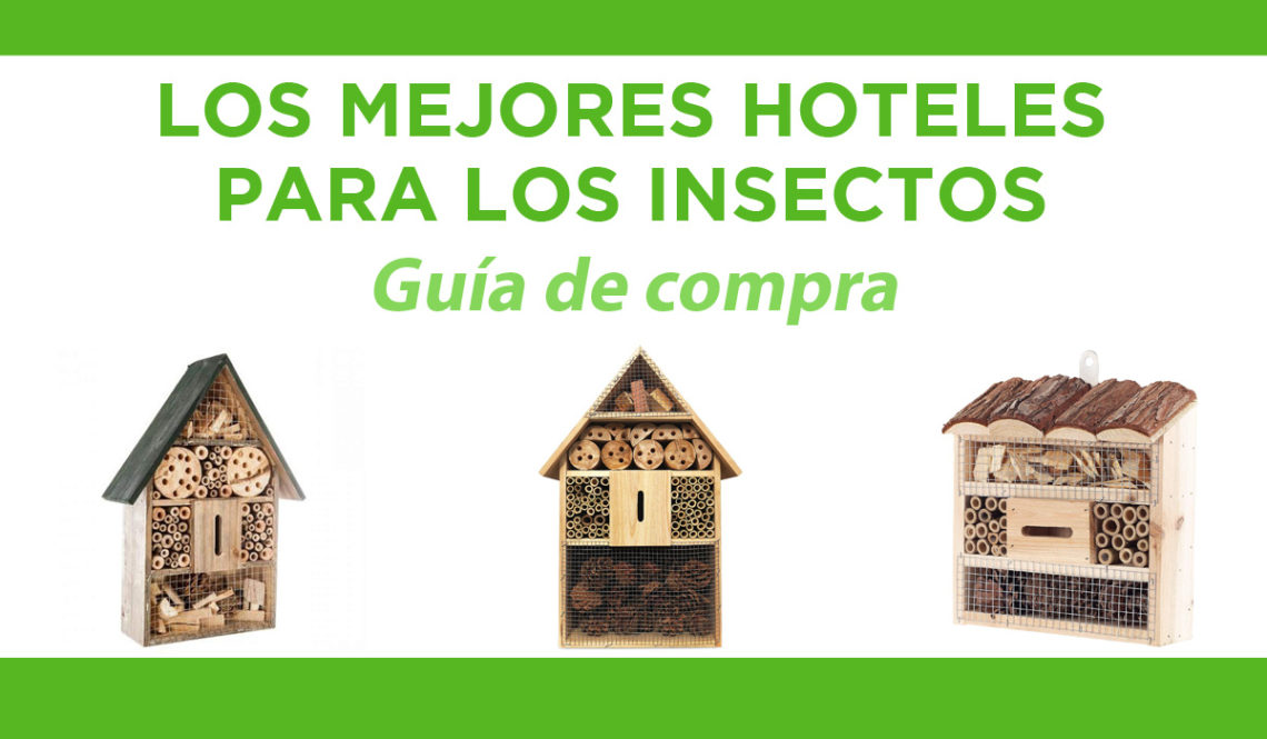 mejores hoteles insectos